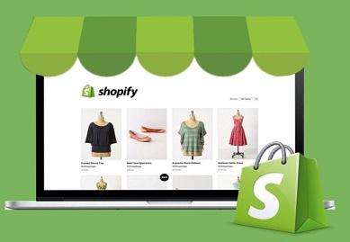 Shopify Website online sales image